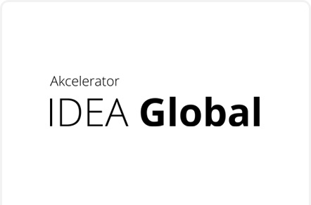 Program Akceleracyjny: IDEA Global